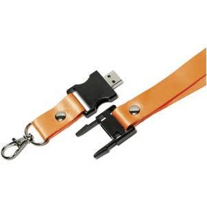 Lanyard with USB