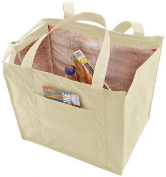 Cream Insulated Lunch Bag