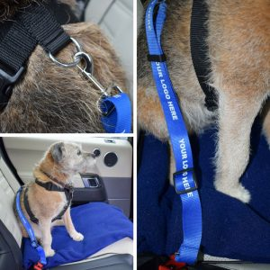Dog Car Safety Belt on Dog